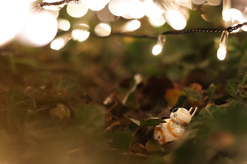 BB-8 Under the Lights | by Saku Takakusaki
