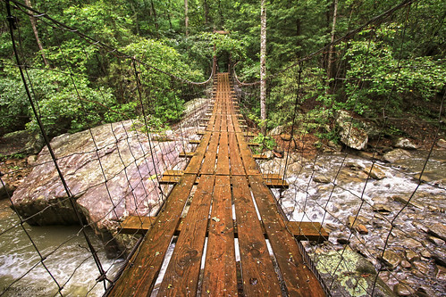 wood bridge light shadow usa brown mountain tree green nature water rain rock america creek forest river us day view unitedstates suspension stones fiume vivid natura ponte trail sentiero acqua montagna freshwater statiuniti andreamoscato