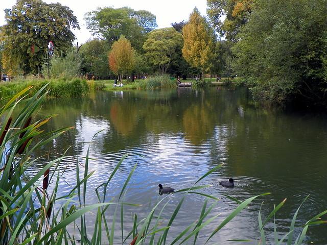 GOC Walthamstow to Stratford 171: East Lake, Victoria Park