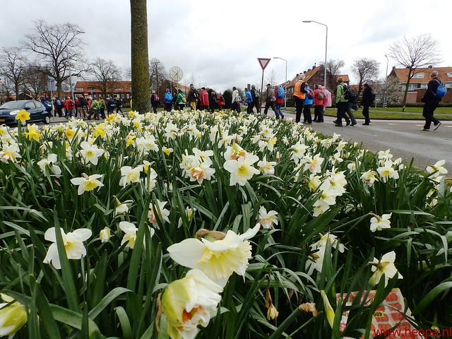 2016-03-23 stads en landtocht  Dordrecht            24.3 Km  (17)