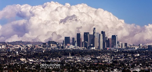 Cloudy Urban Jungle | by Air Butchie Photography