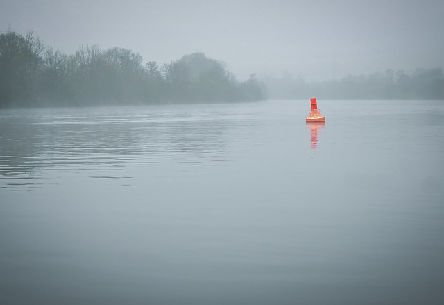 At the foggy river