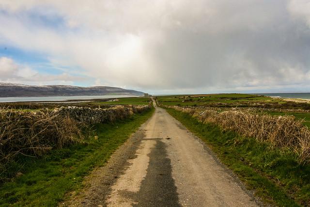 Rush hour in The Burren