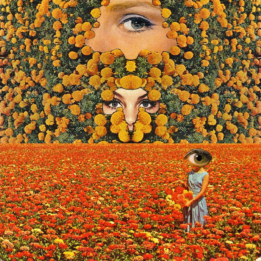 Eyes on flowers