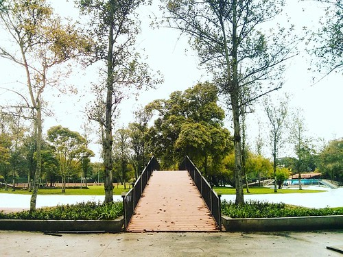 The bridge | by adrianjsanchez
