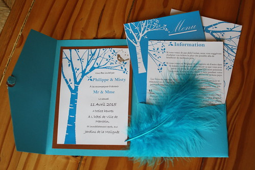 the-completed-invitation_18351531791_o   by misty_bourlart