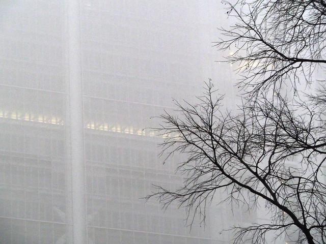 Renzo Piano e la nebbia