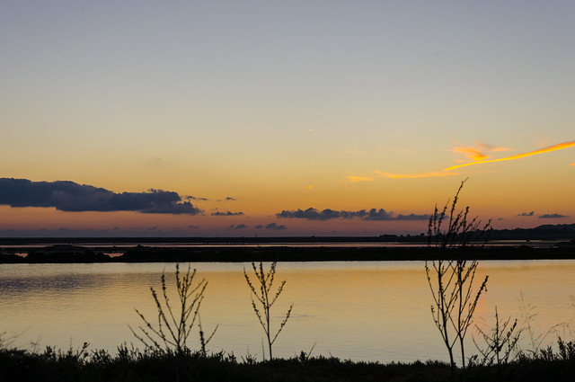 After the sunset in Ses Salines