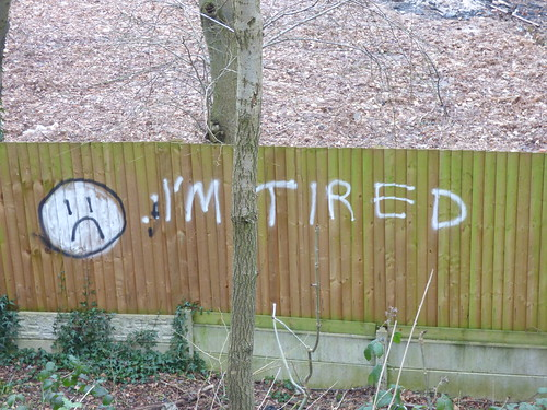 Harborne Walkway - Park Hill Road to Woodbourne Road - I'm Tired graffiti on a fence | by ell brown