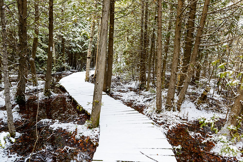 ca winter snow ontario canada spring outdoor hike boardwalk firstnation wiarton chippewa brucetrail