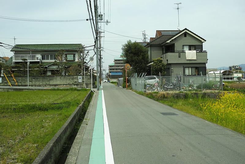 葛井寺に向けて歩く