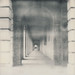 30 Polaroid photographs