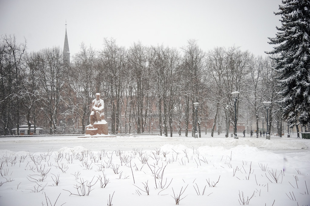 Fantastic snow flakes, interesting falling snow ! 16:48:28 DSC_5878