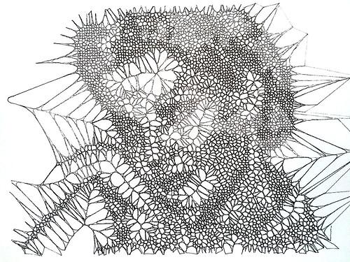 Voronoi | by Jan_Krummrey
