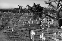 cimitero misto