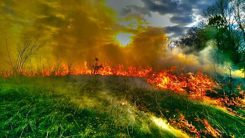 grass burning burn missouri prairie boonville