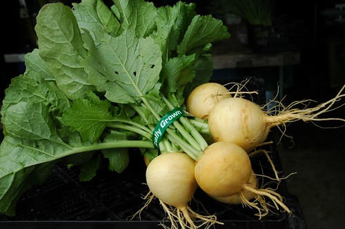 Turnips Golden Globe | by apriljoyfarm