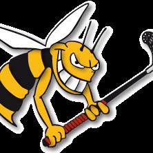 Junioren E II - Hornets Moosseedorf III Saison 2015/16
