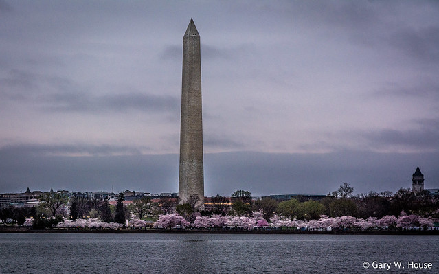 Just After Sunrise at the Tidal Basin