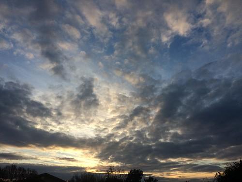 california blue trees winter sunset sun color nature beautiful yellow clouds landscape bayarea iphone5s