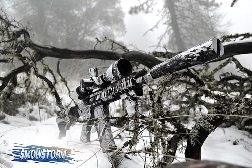 AR-15 Skin Snowstorm