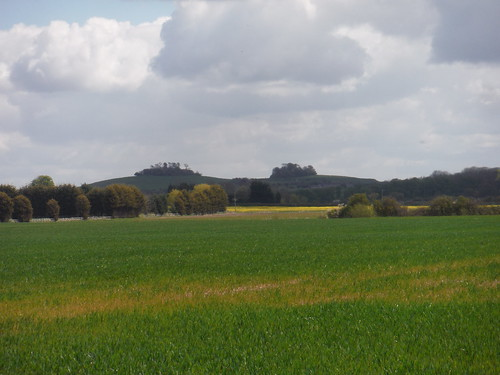 Wittenham Clumps from just outside Didcot SWC Walk 44 - Didcot Circular
