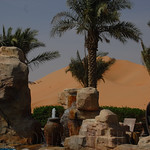 Viajefilos en el desierto de Abu Dhabi 15