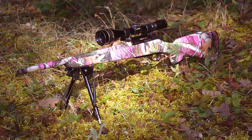 Vista Pink Rifle Skin