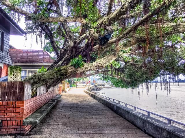 riverside in Tamsui