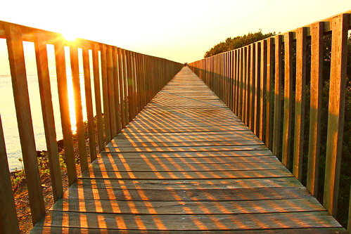 sunrise boardwalk urunga