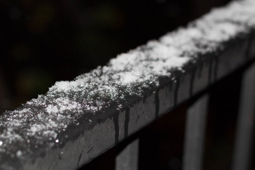 Frost on the rail | by Jesse M Lynch