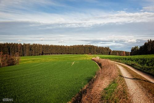 germany bayern deutschland bavaria outdoor feld gras landschaft hof erdweg