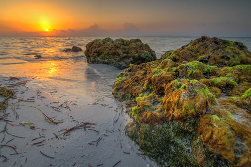 park morning seaweed green beach clouds sunrise honda keys rocks waves state florida bahia algae hdr