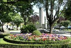 Jardim-municipal