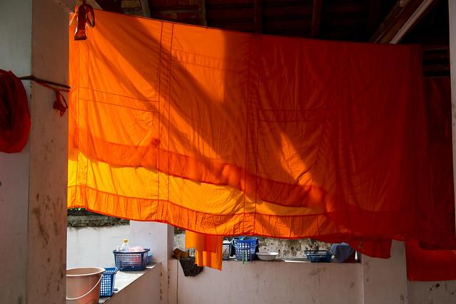 LAO258 Orange robe - Luangprabang 199 - Laos