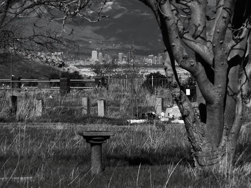 cemetery birdbath wasatch downtown headstone saltlakecity u hilltop magna saltlaketemple saltlakevalley oquirrh waterbirch pleasantgreencemetery lebarodea