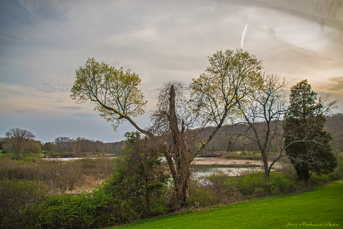 trees sunset mountains grass landscape outside outdoors evening newjersey spring nikon scenery sundown lawn scenic springtime ringwood ringwoodstatepark newjerseystatepark d3100 nikond3100 smack53