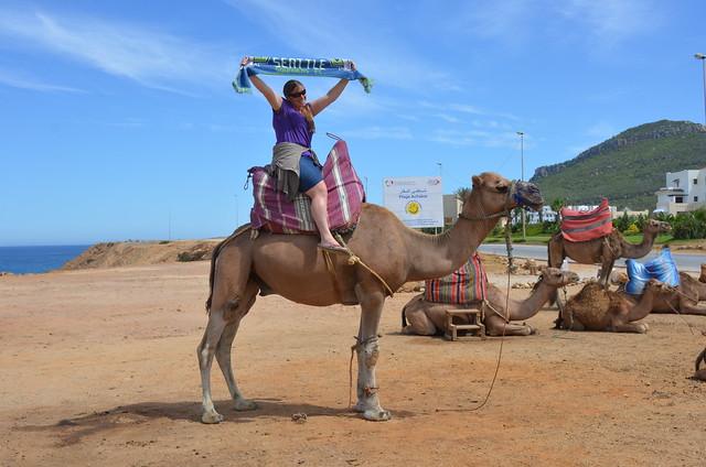 Annie on a camel