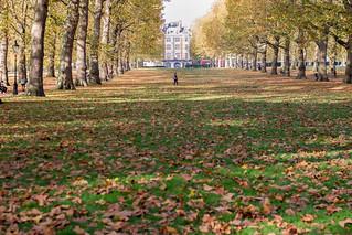 2015-10-london-1.jpg | by anywhereism