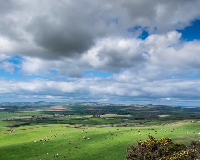 South Wight Landscape - DSCF7851
