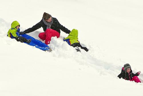highlandpark primarycolors outsidelambertonconservatory juniorslide