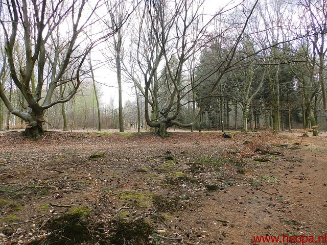2016-04-09            Veenendaal         30 Km (55)