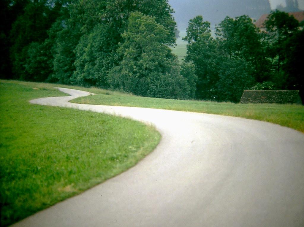 Drumul lung către cariera ta.