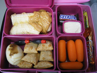 laptop_lunchbox 2007.01.17 | by amanky