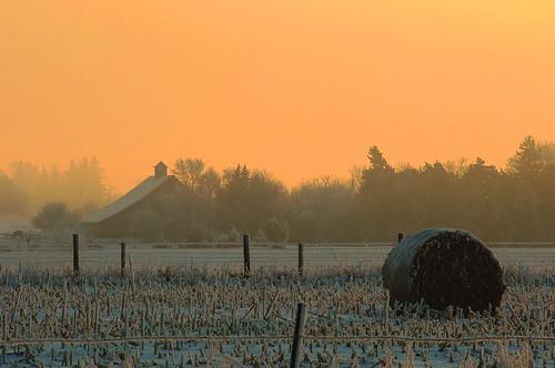 winter snow weather rural landscape countryside frost iowa joemurphy josephlmurphy jmurphpix
