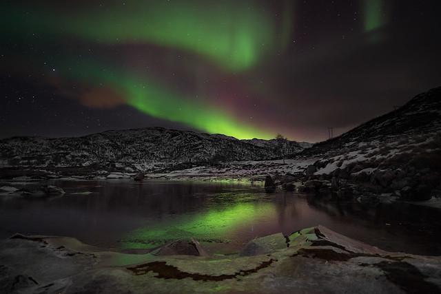 Norway Lights
