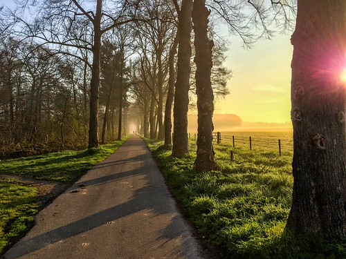 sunrise bikelane morningsun