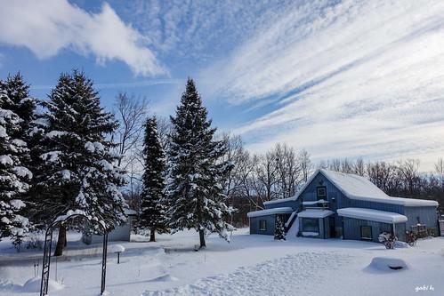 blue trees sky snow ontario clouds barn landscape farm january blues spruce picton princeedwardcounty firtrees gabih