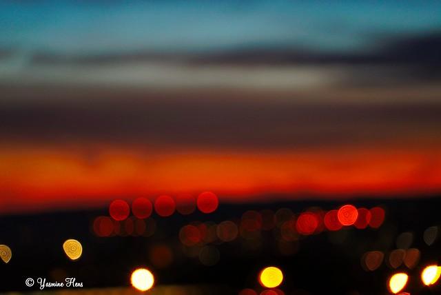 Light Morning (La photo ratée)