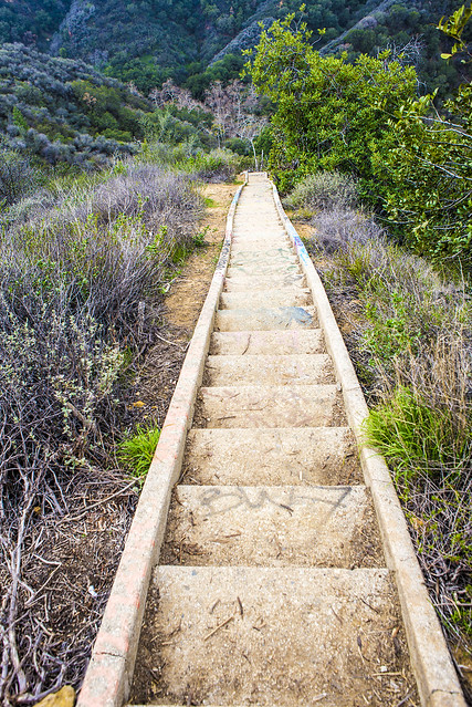 Stairs Down_Murphys Ranch Hike_Jan 30th 2015_Annie Lesser